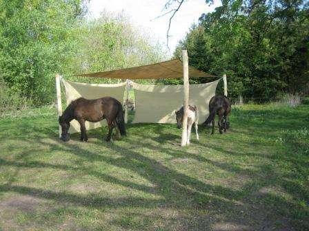 Flytbare læskure til heste og andre dyr